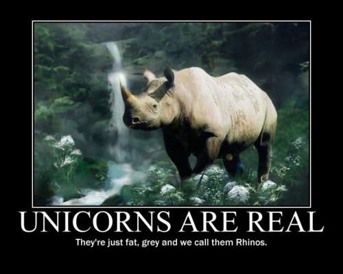 Unicorns are real: They are just fat  and we call them Rhinos.