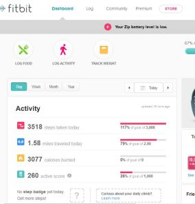 Snapshot of Fitbit dash